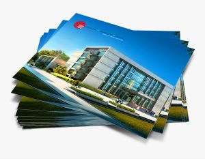 8½x11 Brochure (Horizontal) (24)
