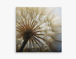 11x11 ¾'' Canvas Wrap